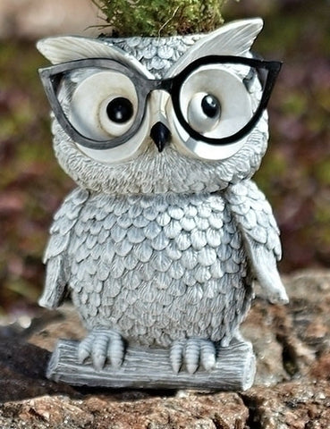 Woodland Critters with Eye Glasses Novelty Planters (Owl)