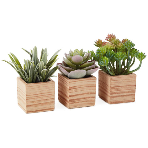 "Hallmark Assorted Succulents Potted Artificial Plant Decoration, 4"", Set of 3"