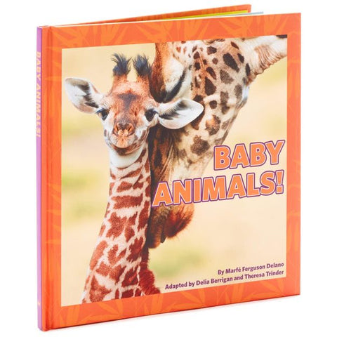 Hallmark Baby Animals! Book