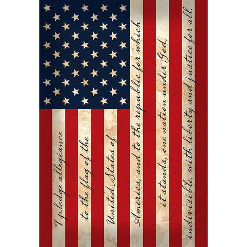 Dicksons I Pledge Allegiance Patriotic Stars & Stripes 29 x 42 Large House Flag