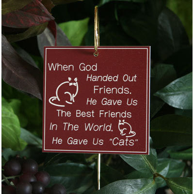 """God Handed Out Friends ~ Cat"" Tribute"