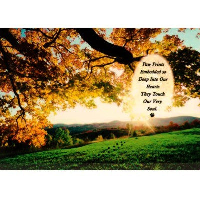 """Quiet Moments In A Field"" Personalized Full Color Plaque"