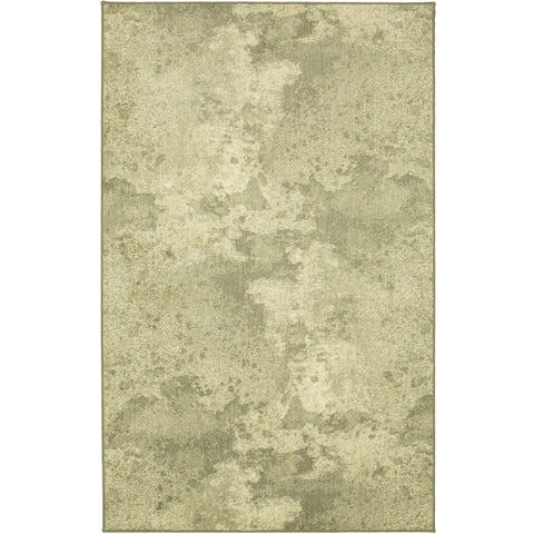Design Concepts Revolution Berkeley Dorian Gray Rug - Karastan