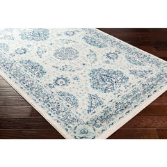 Chester Aqua, Light Gray Rug - Surya (CHE-2302)
