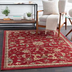 Riley Bright Orange, Khaki Rug - Surya (RLY-5024)