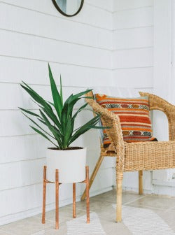 Image of a copper plant stand with a plant in it in a white pot