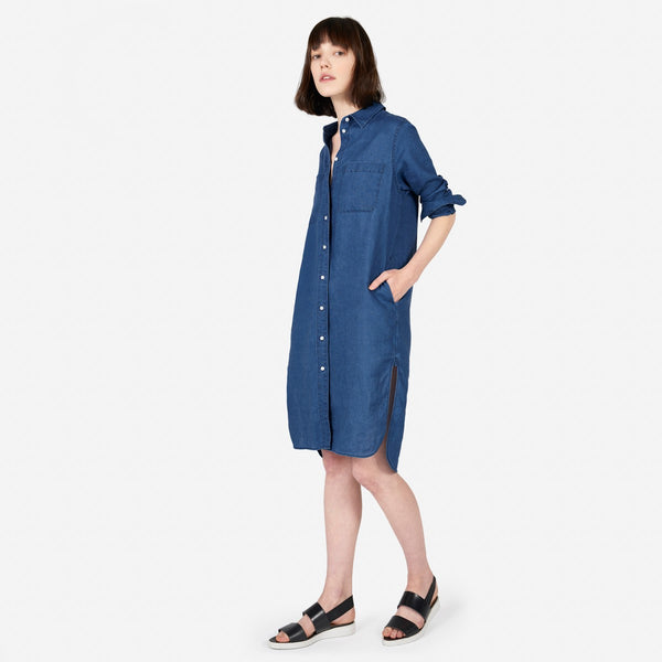 Photo of a brunette model wearing Everlane's denim dress.