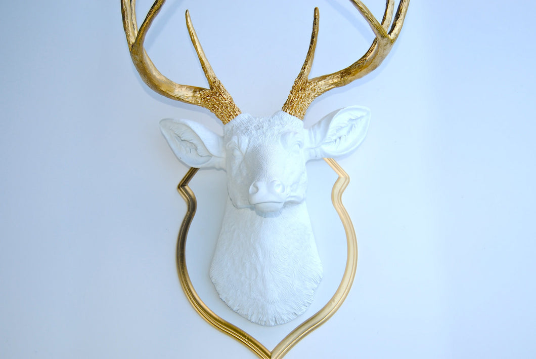 Faux Taxidermy Deer Head With Matching Shield Mount