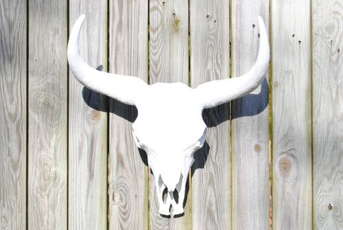White Faux Taxidermy Xl Cow Skull Wall Mount