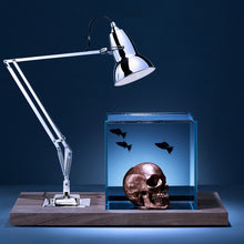 Isolate Mid-Century Aquarium, Anglepoise Lamp