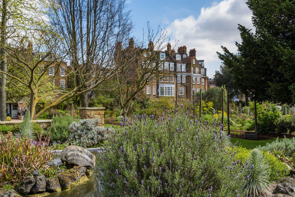 Chelsea Physic Garden courtesy of Andy Sedg