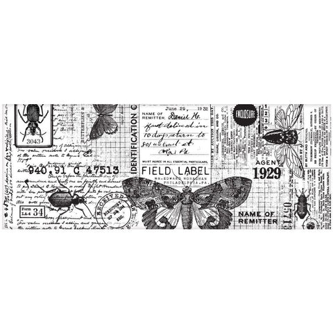 *NEW* Tim Holtz Idea-ology Collage Paper - Entomology