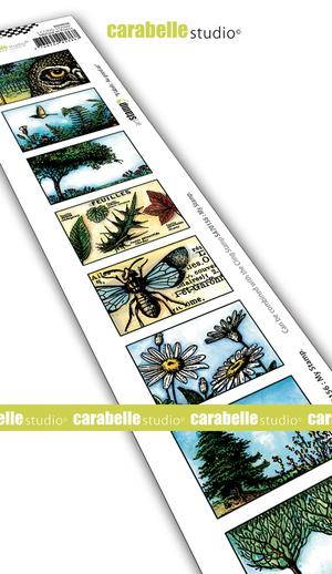 Carabelle Studio - Cling Stamp 8 Labels Au grand air