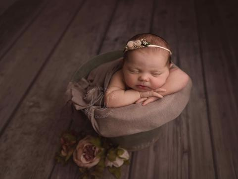 The Newborn and Portrait Show 2019