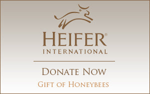 Heifer - Donate Now