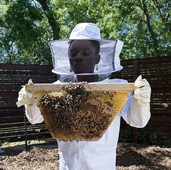 Me and the Bees - Houston Chronicle