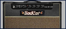 BAD CAT - CUB III SERIES