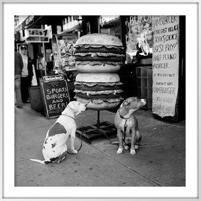 Dogs with Burger, New York City
