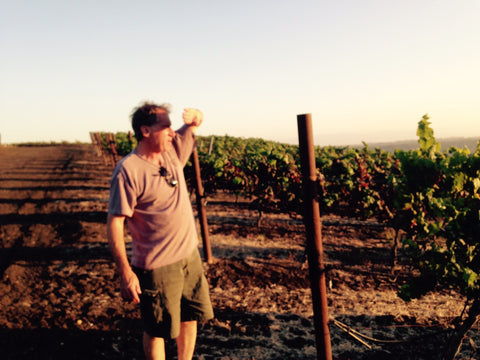 Winemaker Jeff Fink looks on...