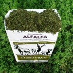 Feed - Chaffhaye, Pasture-in-a-Bag, 100% hay replacement, 50 LBS.