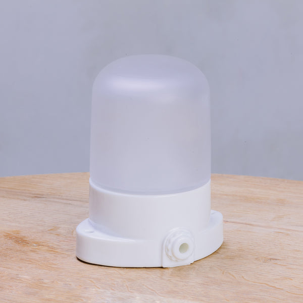 Dyke & Dean Mounted Ceramic Wall Light White / Frosted
