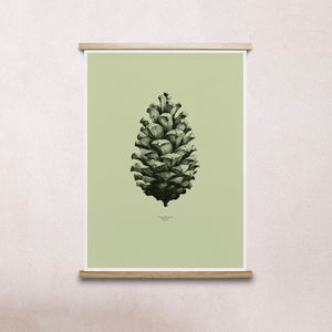 Paper Collective Nature 1:1 Pine Cone Green Print