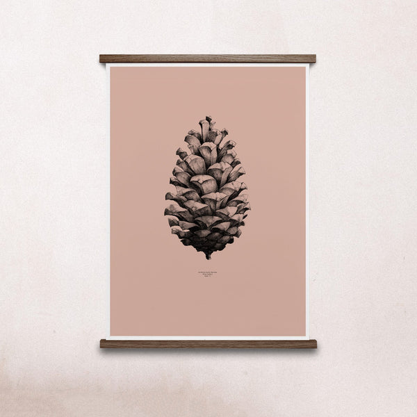 Paper Collective Nature 1:1 Pine Cone Pink