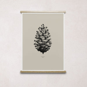Paper Collective Nature 1:1 Pine Cone Sand Print