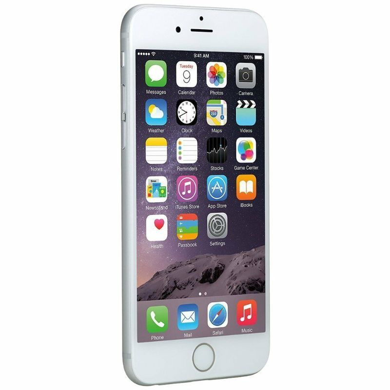 Apple iPhone 6 Factory Unlocked GSM Smartphone - 64GB-Daily Steals