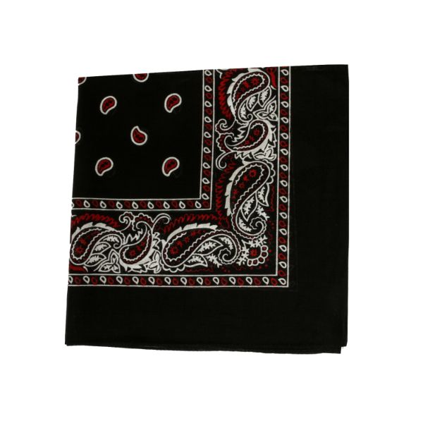 100% Cotton 18 Pack Bandana - 22 x 22-Paisley Black and Red-Daily Steals