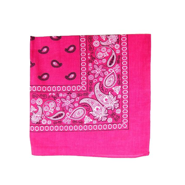 100% Cotton 18 Pack Bandana - 22 x 22-Paisley Hot Pink-Daily Steals