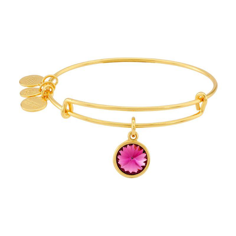 Alex And Ani February Birthstone Gold Expandable Bangle Bracelet A09EB241G-