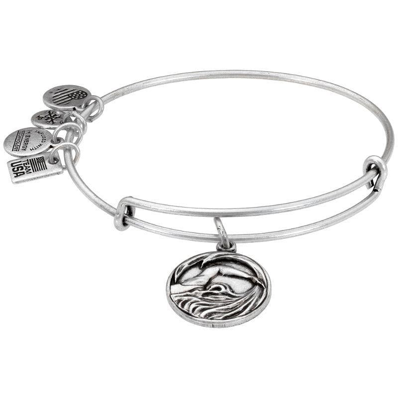 Alex And Ani Team USA Swimming Charm Rafaelian Silver Bangle Bracelet AS16US08RS-