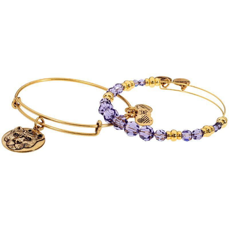 Alex And Ani Wild Heart Two Tone One Size Bracelet A17ECOM01RG-
