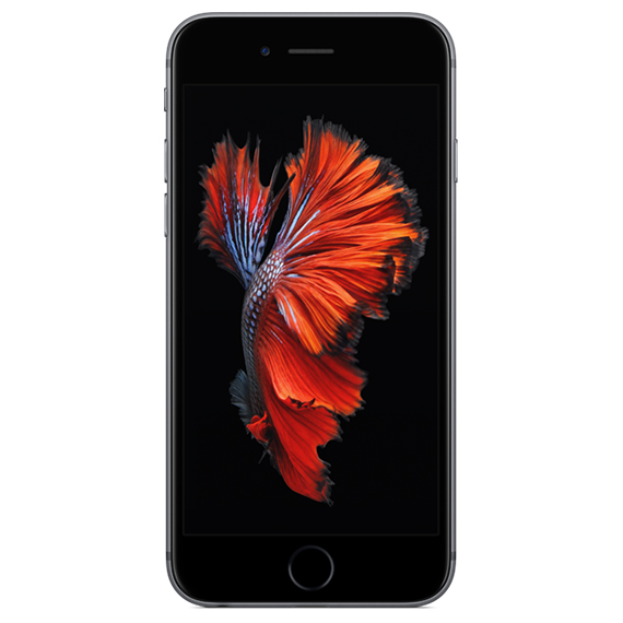 Daily Steals-Apple iPhone 6 Plus 16GB Space Gray (Verizon and GSM Unlocked)-Cellphones (refurbished)-