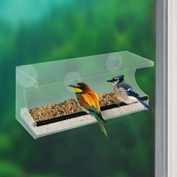 See-Through Acrylic Window Bird Feeder-Daily Steals