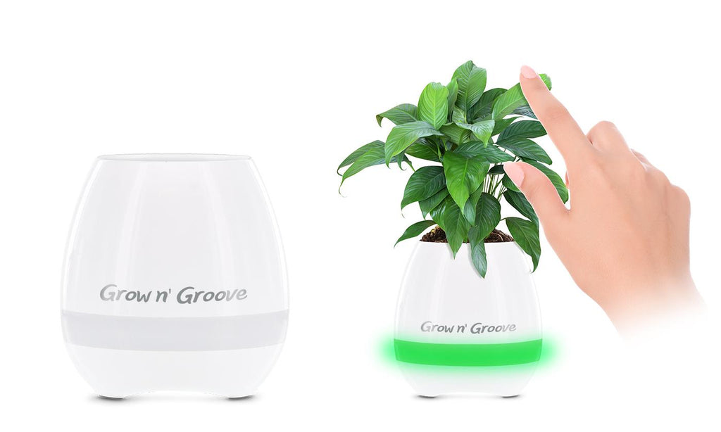 Aduro Grow Groove Piano-Playing LED Bluetooth Speaker Flower Pot-Daily Steals