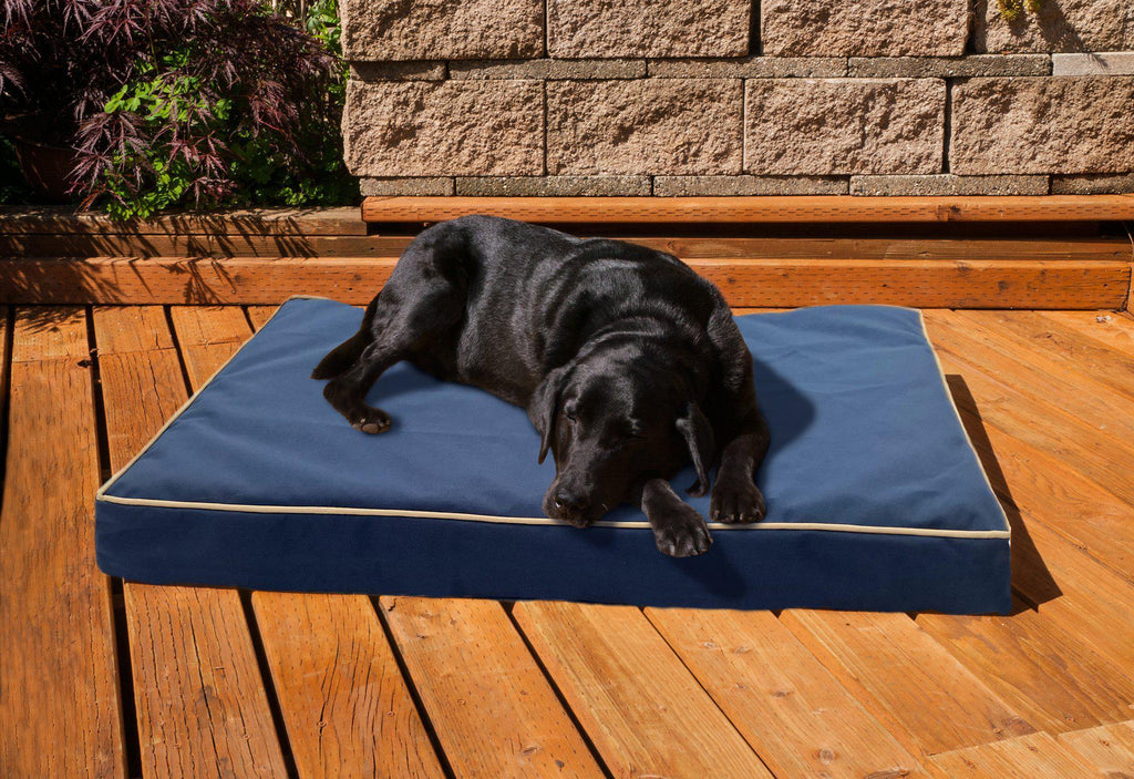 Daily Steals-Deluxe Indoor/Outdoor Water-Resistant Orthopedic Pet Bed-Pets-Espresso-S-