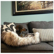 Daily Steals-Duke and Darling Ivory Faux Fur Plush Pet Bed-Pets-