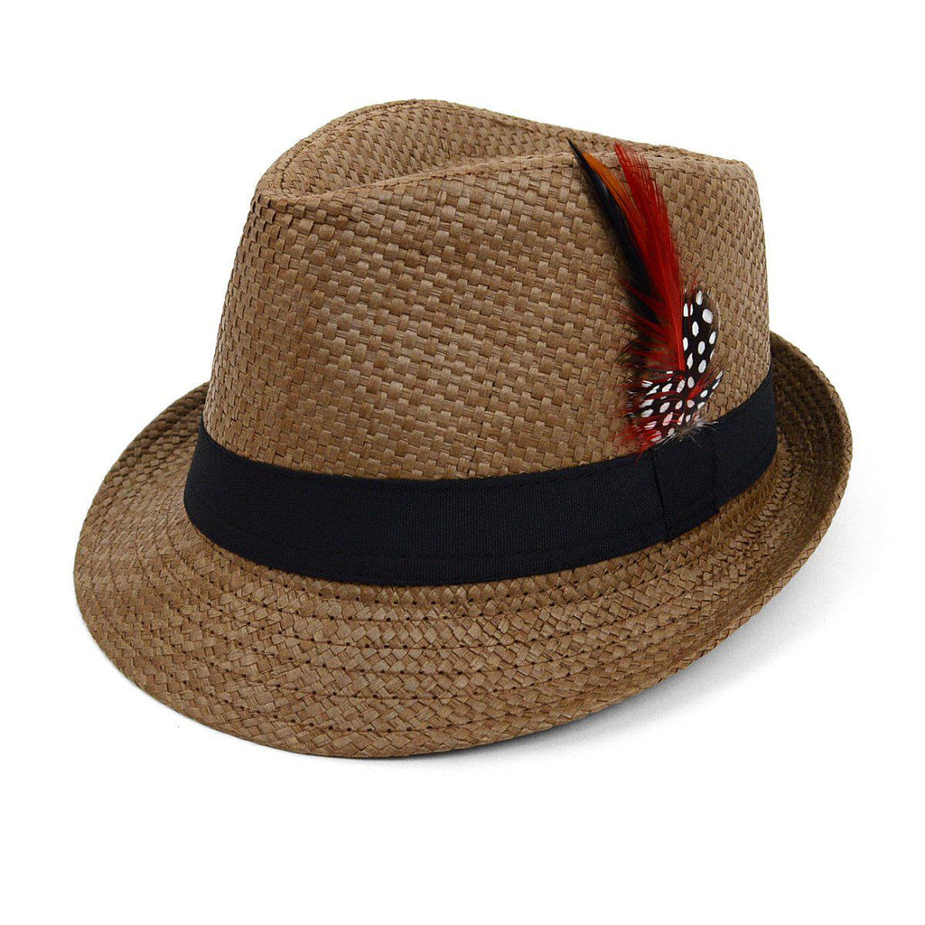 Chapeau Fedora tissé printemps / été avec plumes - 3 options disponibles-Brown-Daily Steals