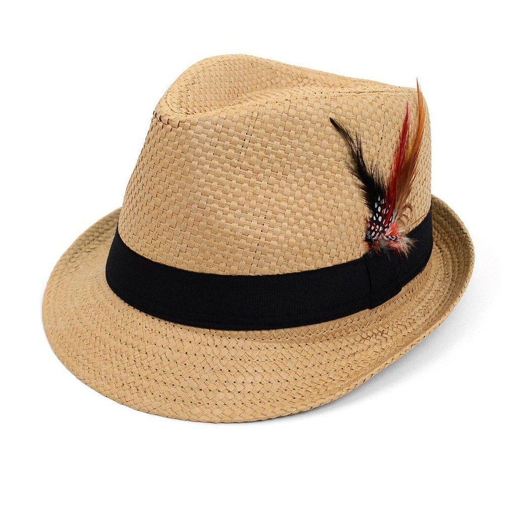 Chapeau Fedora tissé printemps / été avec plume - 3 options disponibles-Tan-Daily Steals