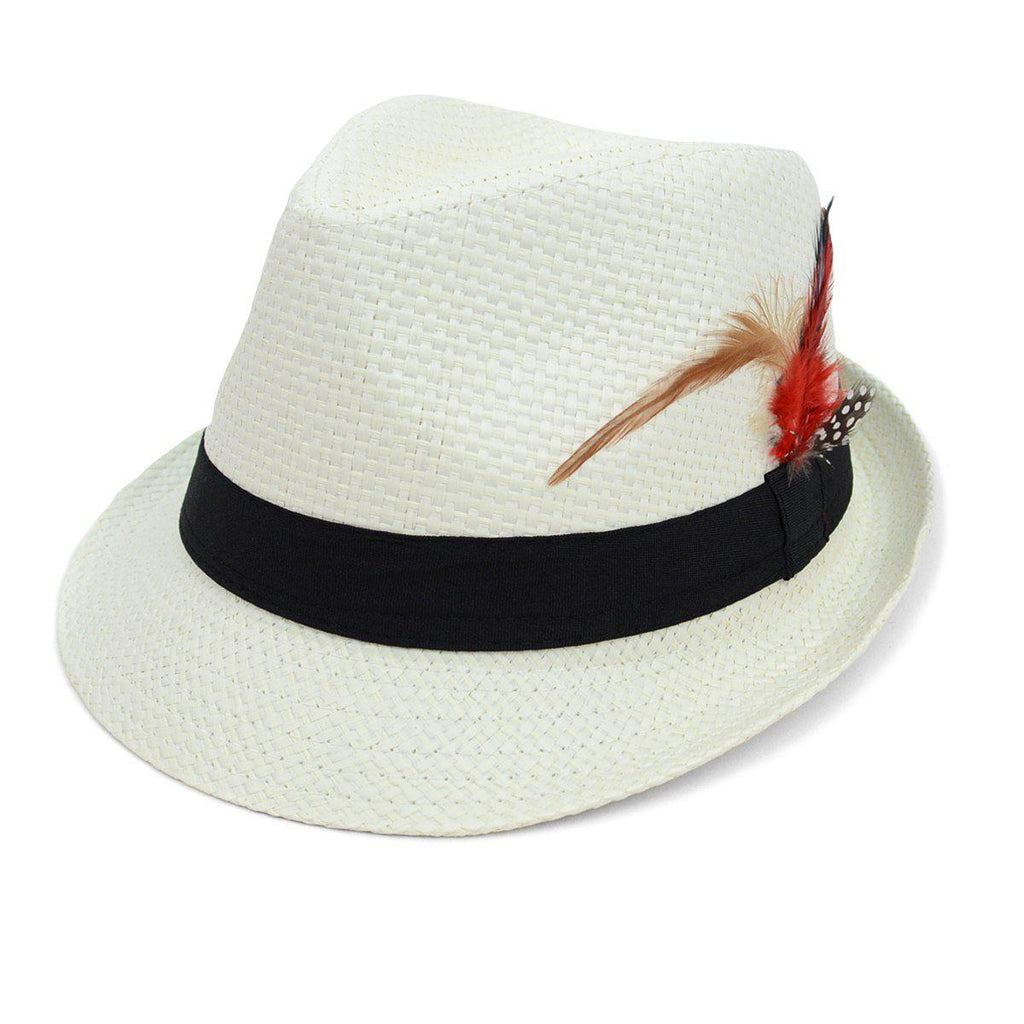 Spring/Summer Woven Fedora Hat with Feather - 3 Options Available-White-Daily Steals