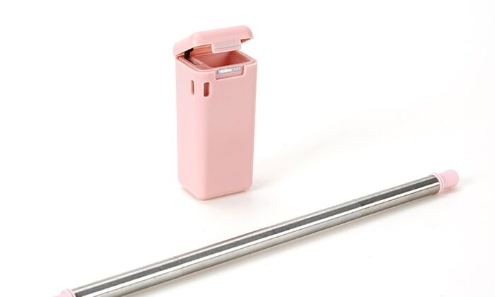 Collapsible, Reusable Stainless Steel Drinking Straw with Case - 2 Pack-Pink-Daily Steals