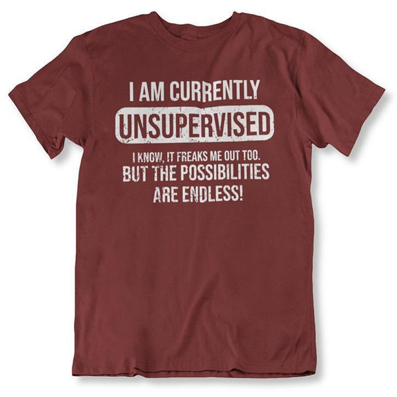 I Am Currently Unsupervised, Possibilities are Endless Funny T Shirt-Maroon-2XL-Daily Steals
