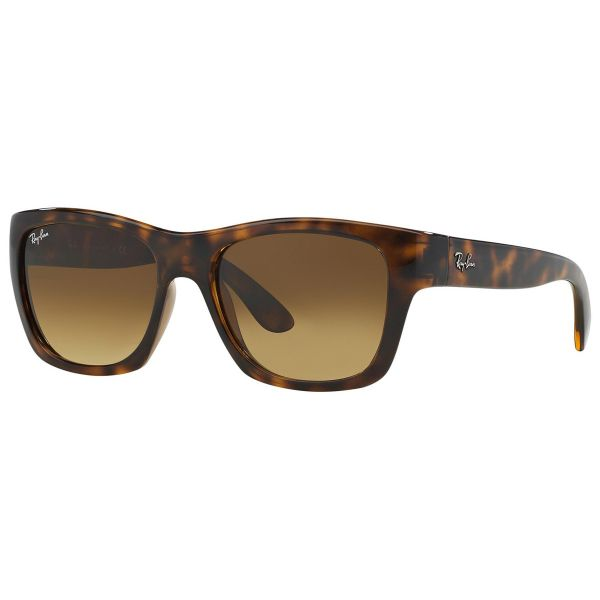 Ray-Ban Sunglasses RB4194 710/85 Tortoise Brown Gradient-Daily Steals