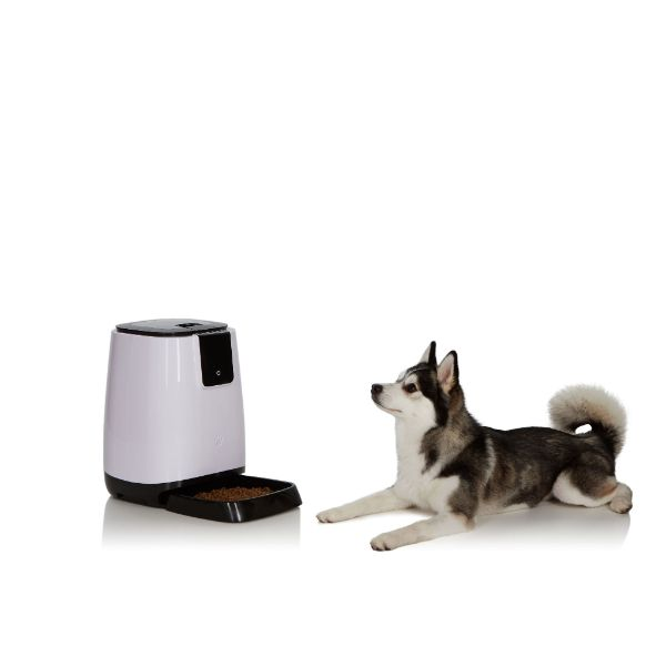 EZ-PET Smart Programmable Automatic Feeder-Daily Steals