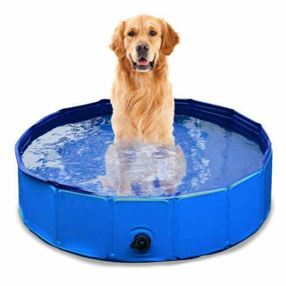 Collapsible Outdoor Portable Swimming Pool for Kids or Pets-Daily Steals