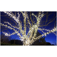 225 Solar Powered LED String Lights - 1, 2 or 4 Pack-Daily Steals