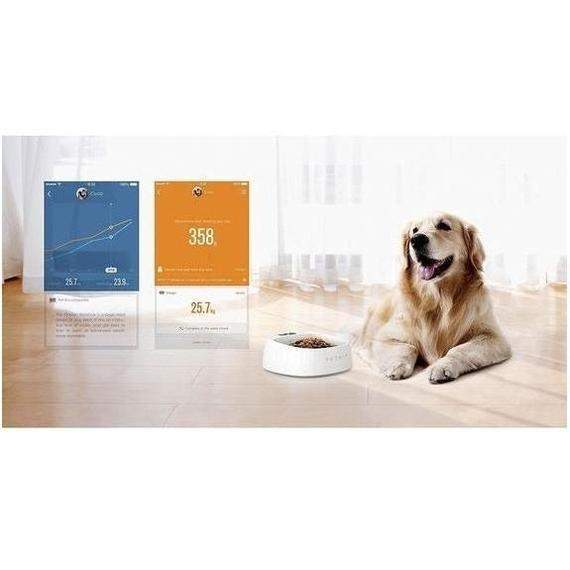 PetKit Fit P2 Smart Pet Activity Tracking Device with Dual Rubberized Connector-Daily Steals