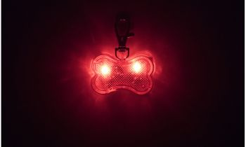 Water-Resistant LED Dog Collar Light Charm-Red-Bone Shape-Daily Steals